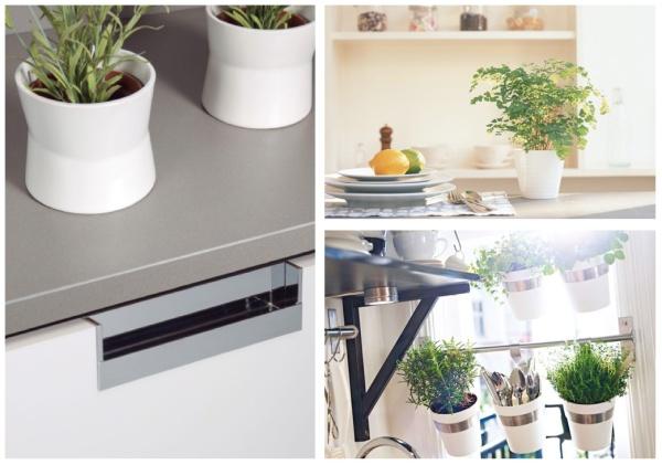 plantas-en-la-cocina-plants-in-the-kitchen-viefe-2
